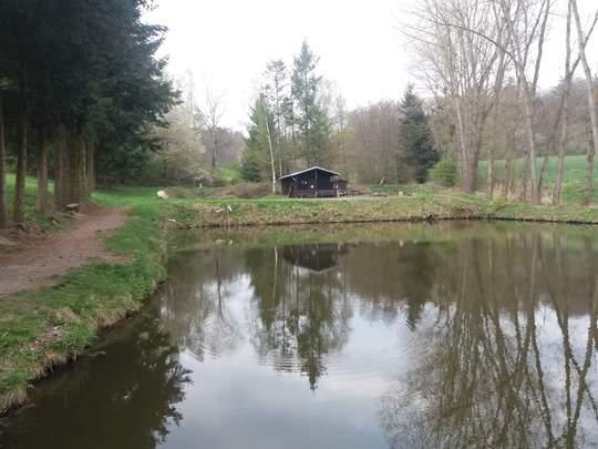 Naturefish privat Teich