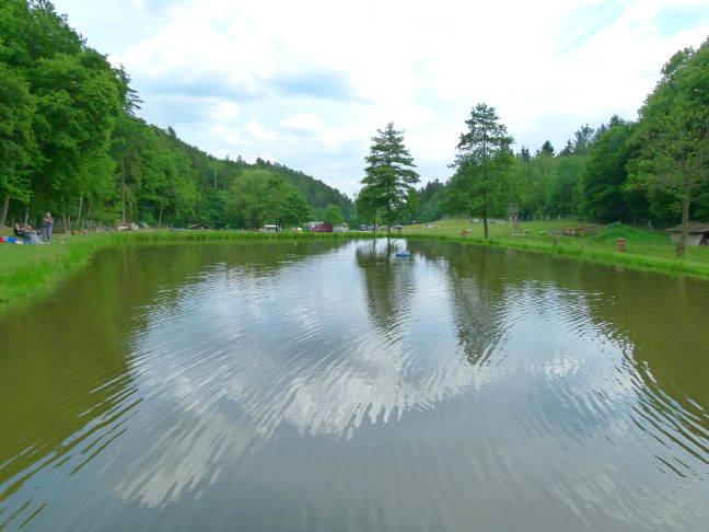 Naturefish Teich 1