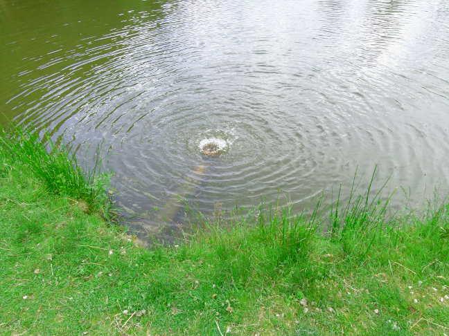 Wasser Kreislauf System